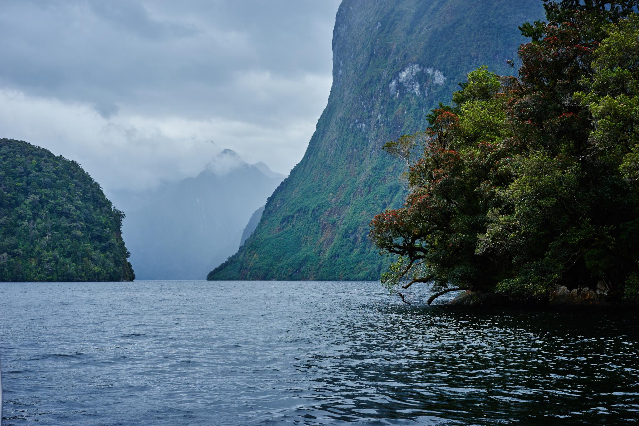New_Zealand_373.jpg